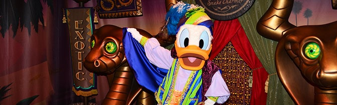 Donald Duck Magic Kingdom meet and greet KennythePirate