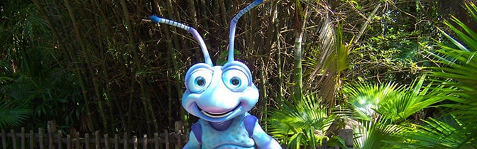 Flik meet and greet at Animal Kingdom in Walt Disney World