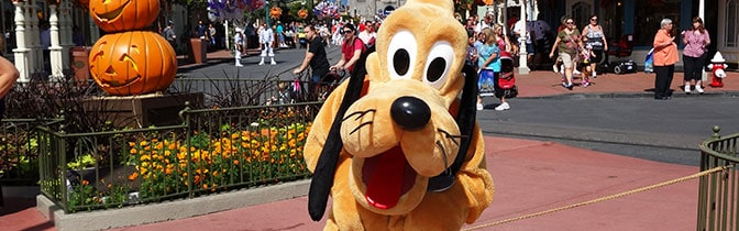 Pluto Magic Kingdom meet and greet