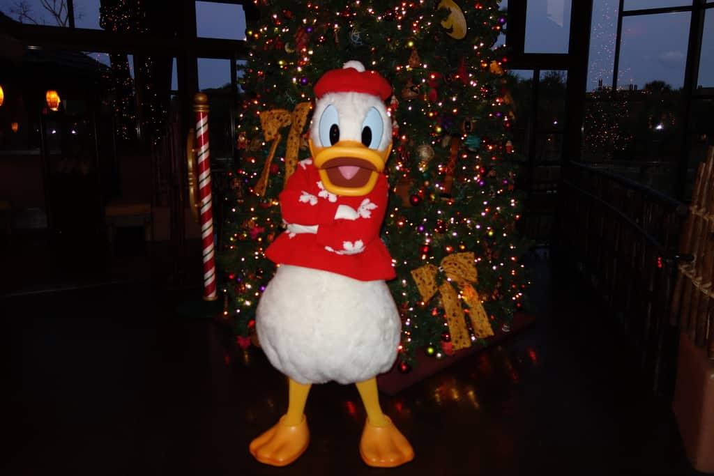 Donald Dec 2012 xmas resort akl (7)