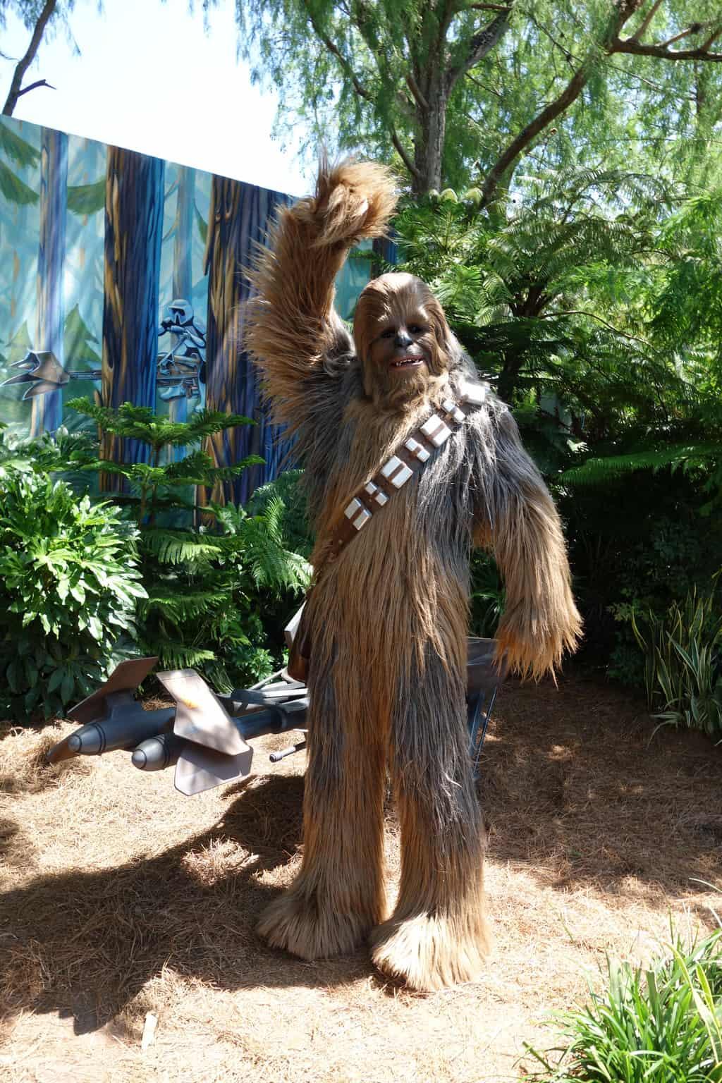 Chewbacca Star Wars Weekends 2013