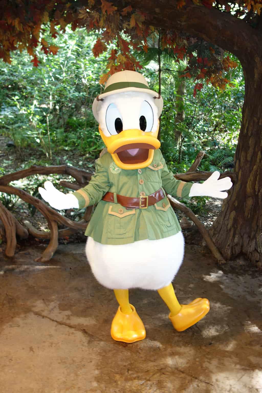Donald AK 2012