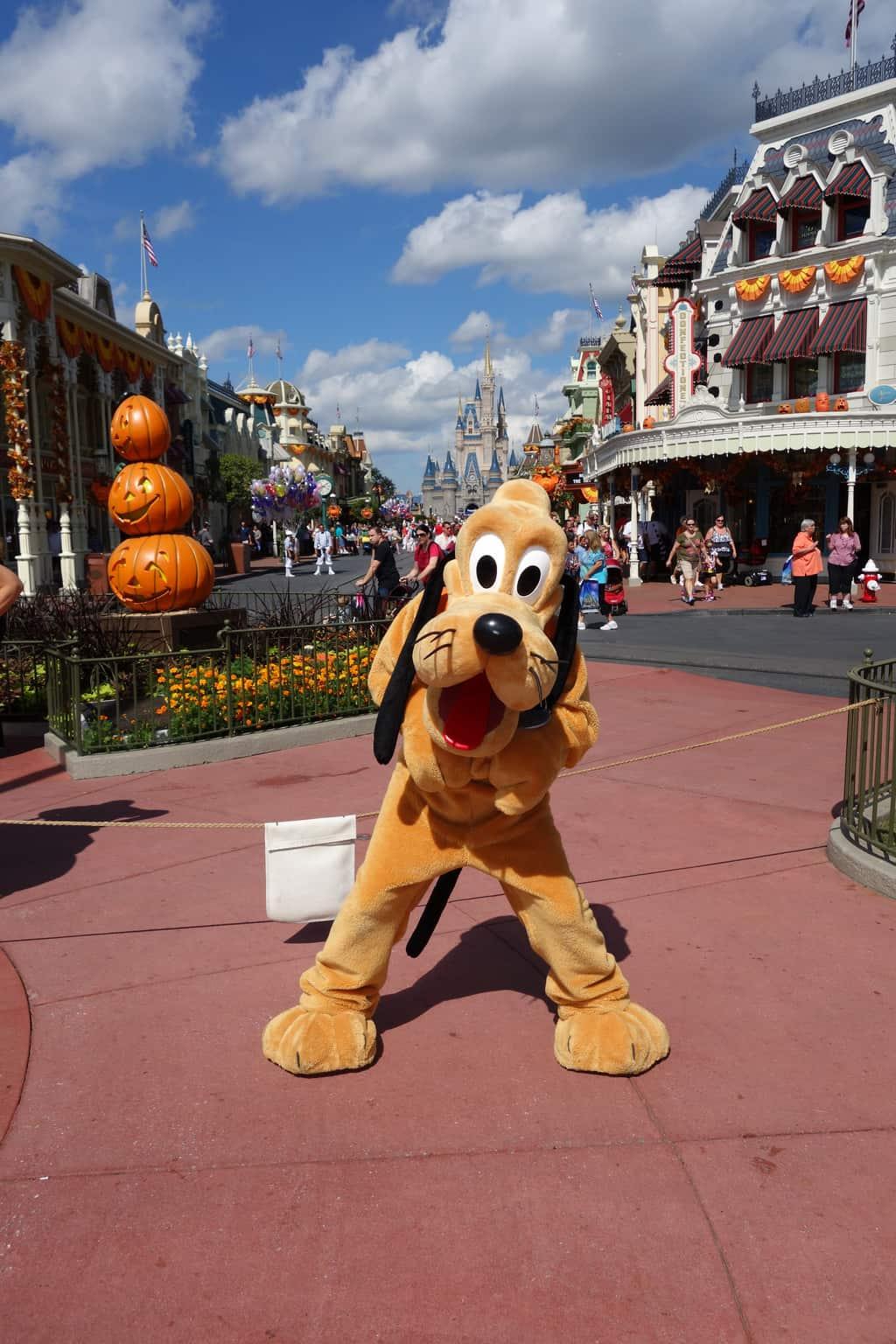 Pluto at Magic Kingdom 2012