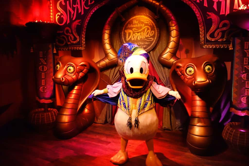 """Donald Duck as """"The Astounding Donaldo"""" in Pete's Silly Circus during early previews fall 2012"""