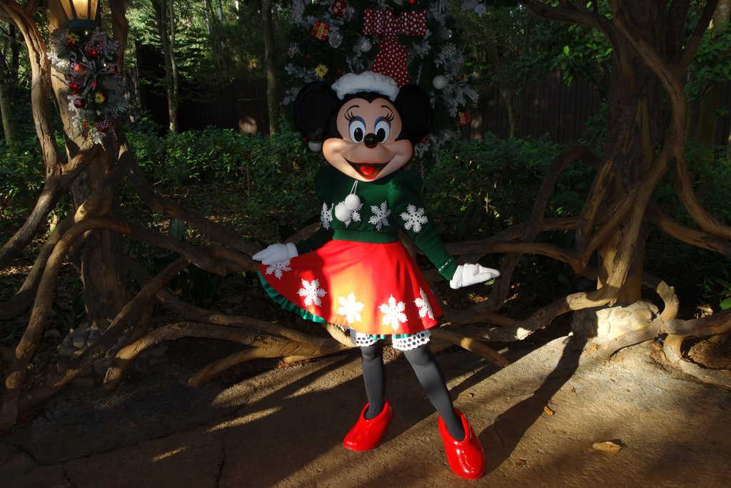 Animal Kingdom Christmas 2012