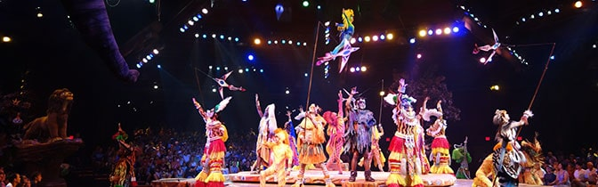 estival of the Lion King Information