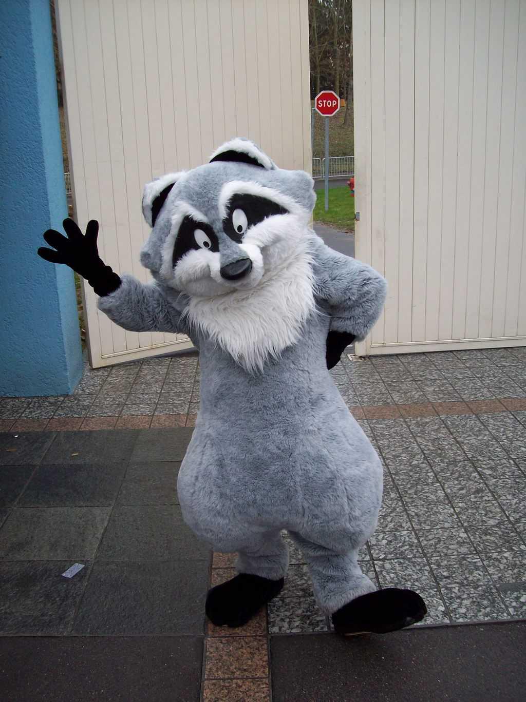 Meeko as he appears at Disneyland Paris