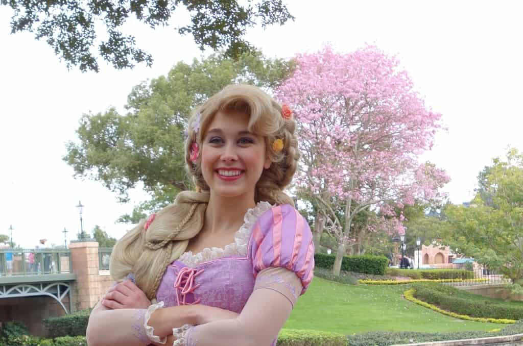 Rapunzel International Gateway (4)