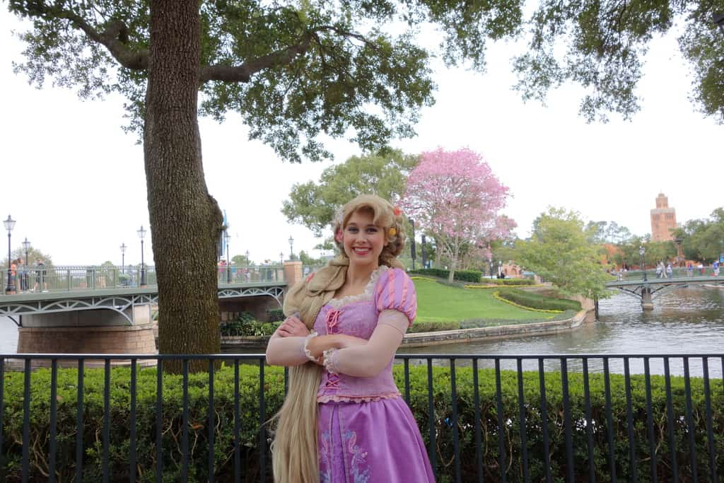 Rapunzel International Gateway (6)