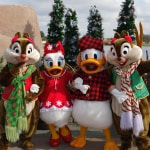 Winter Wonderland Chip Dale Daisy Donald (3)