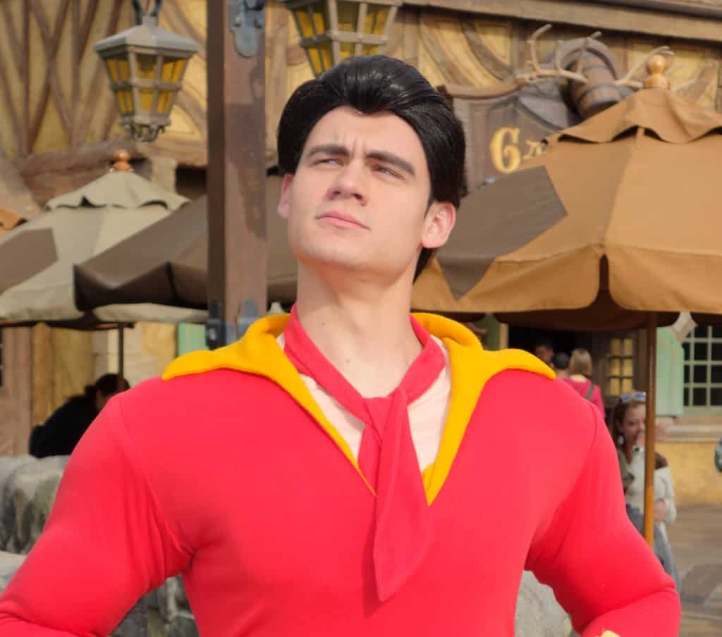 Only true fans understand the deep contemplications and ponderizings of Gaston.