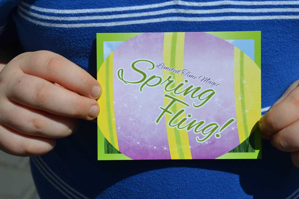Limited Time Magic Spring Fling (12)