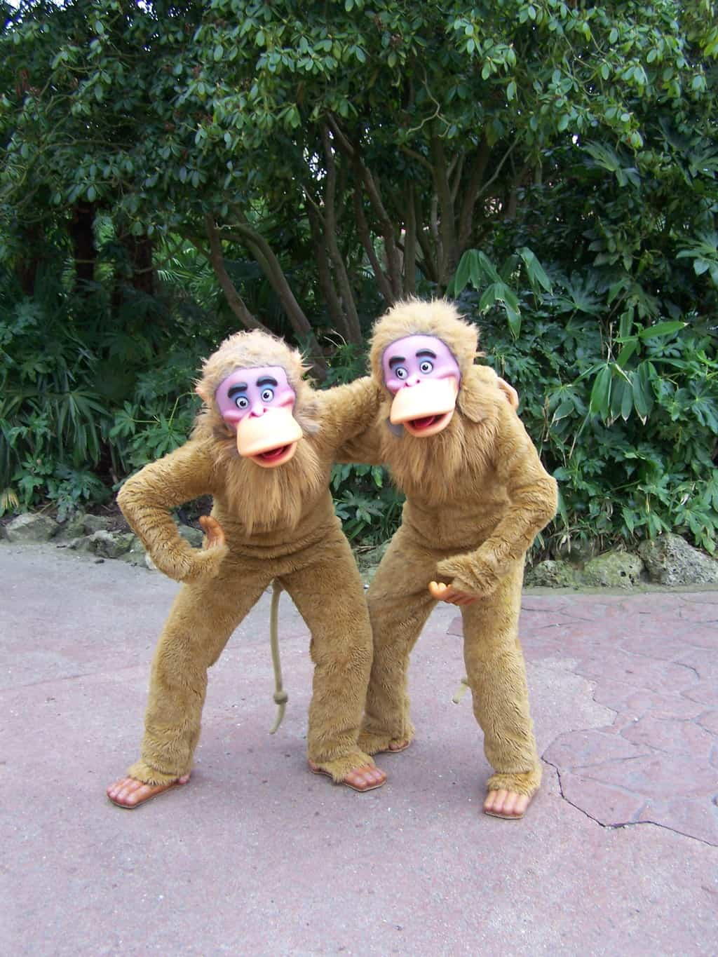 The monkeys from The Jungle Book came out for Meet'n'Greets for years, but sadly have disappeared for some time now. The last time they were out was on the 12th of April 2012 during the 20th Anniversary Celebrations that day.