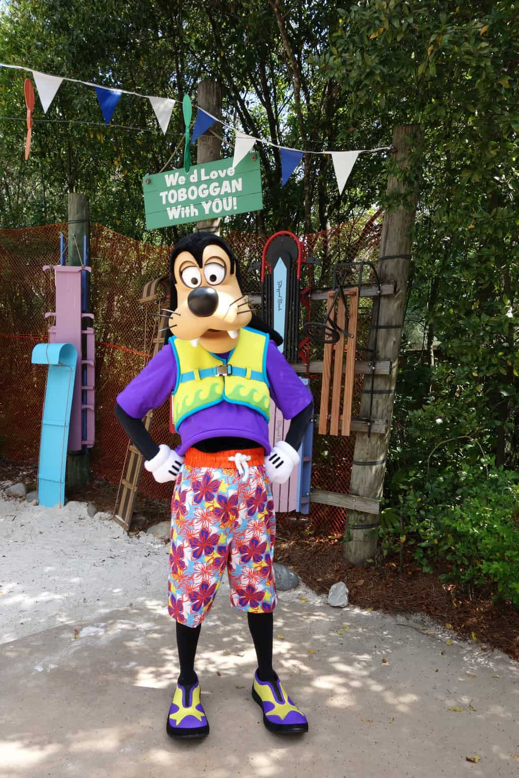 Goofy - Blizzard Beach (2)