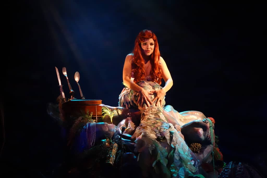 Voyage of the Little Mermaid (9)