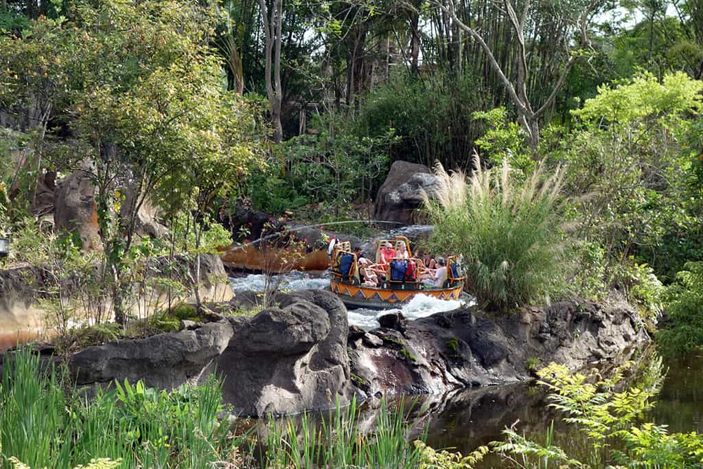 Walt Disney World Animal Kingdom Kali River Rapids (3)