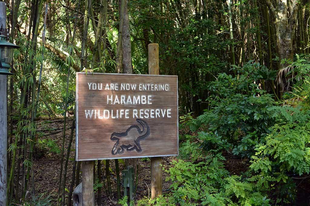 Walt Disney World Animal Kingdom Kilimanjaro Safaris (4)
