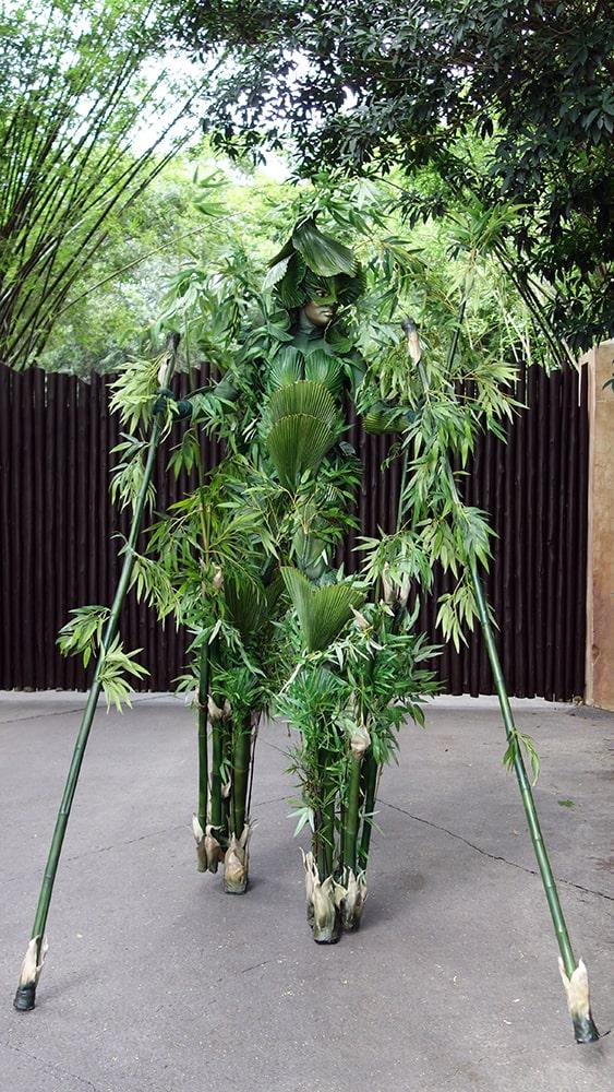 Bamboo (10)