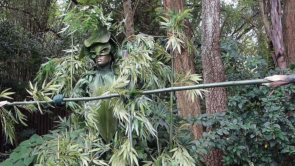 Bamboo (5)
