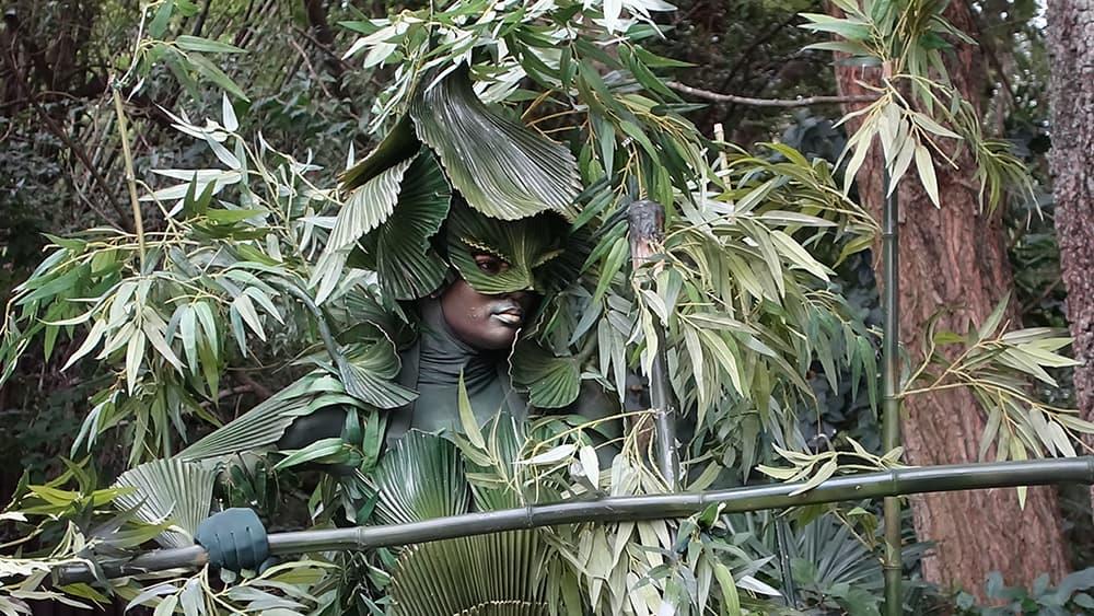 Bamboo (6)