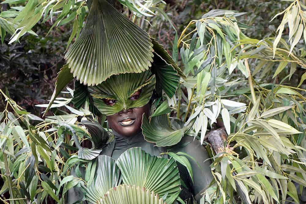 Bamboo (9)