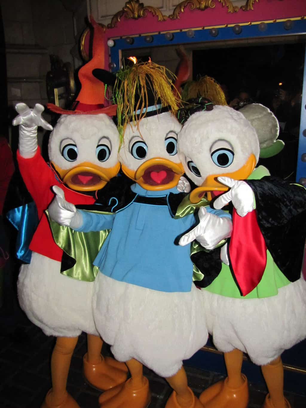 During the Halloween Party on October 31st 2011 Huey, Dewey and Louie did meet'n'greets with guests. This was the first time the three came out to greet guests at Disneyland Paris.