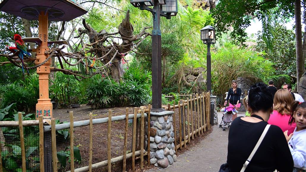 Walt Disney World, Animal Kingdom, Character Changes, January 2014,