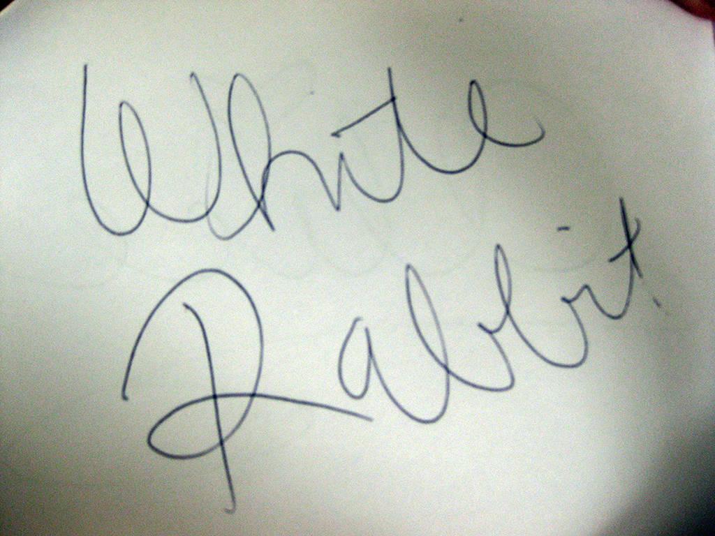 White Rabbit autograph