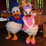 Photo of Daisy Duck and Donald Duck together at Disney's Animal Kingdom