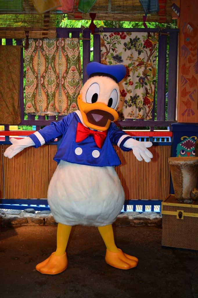 Sailor Donald Duck when he met at Animal Kingdom