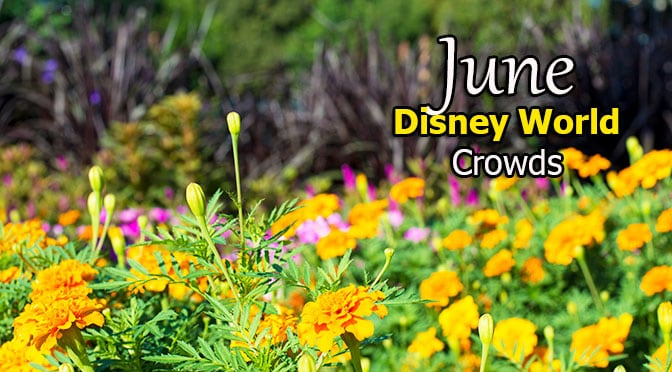 Disney World Crowd Calendar June 2019
