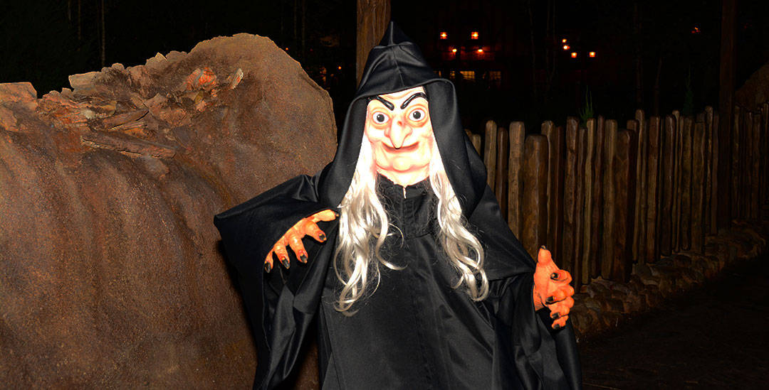 Mickey's Not So Scary Halloween Party 2014 The Witch The Old Hag
