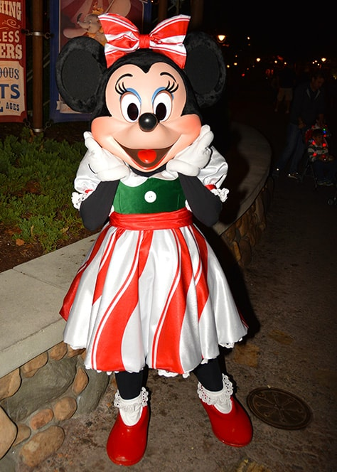 Mickey's Very Merry Christmas Party at Walt Disney World Magic Kingdom November 2014 (7)