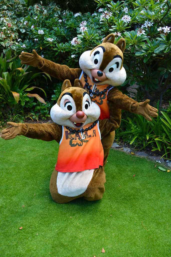 Chip n Dale at the Halawai Lawn at Disney's Aulani in Oahu Hawaii