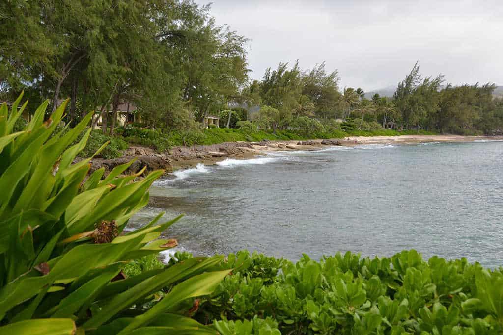 Turtle Bay Resort Noth Shore Oahu Hawaii (16)