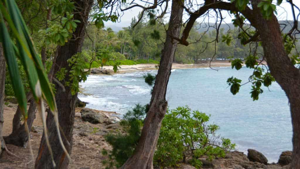 Turtle Bay Resort Noth Shore Oahu Hawaii (17)
