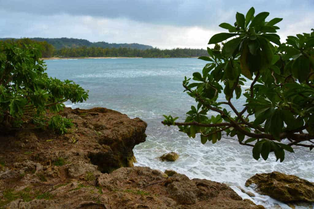 Turtle Bay Resort Noth Shore Oahu Hawaii (18)