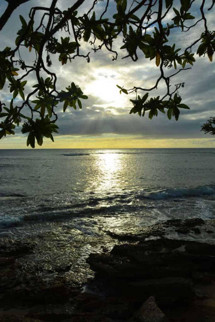 Turtle Bay Resort Noth Shore Oahu Hawaii (19)