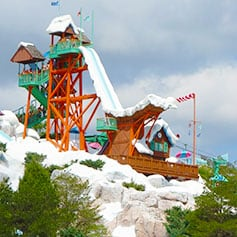 Summit Plummet at Disney's Blizzard Beach Water Park