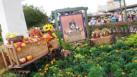 Mickey's Not So Scary Halloween Party at Walt Disney World's Magic Kingdom 2015 (2)