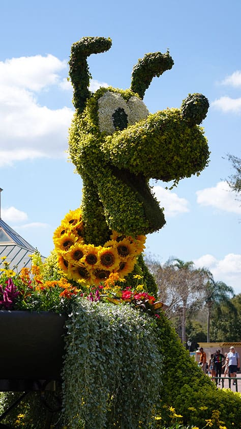 Epcot Flower and Garden Festival topiaries 2016 (20)