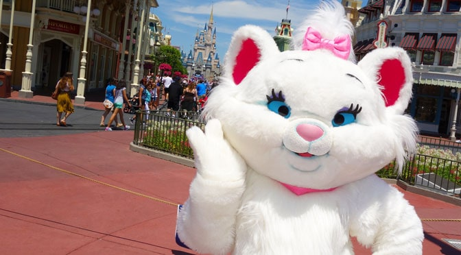 Is Marie the Cat is leaving the Magic Kingdom?