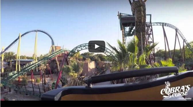 Busch Gardens releases full POV video of Cobra's Curse ride #StrikingDistance