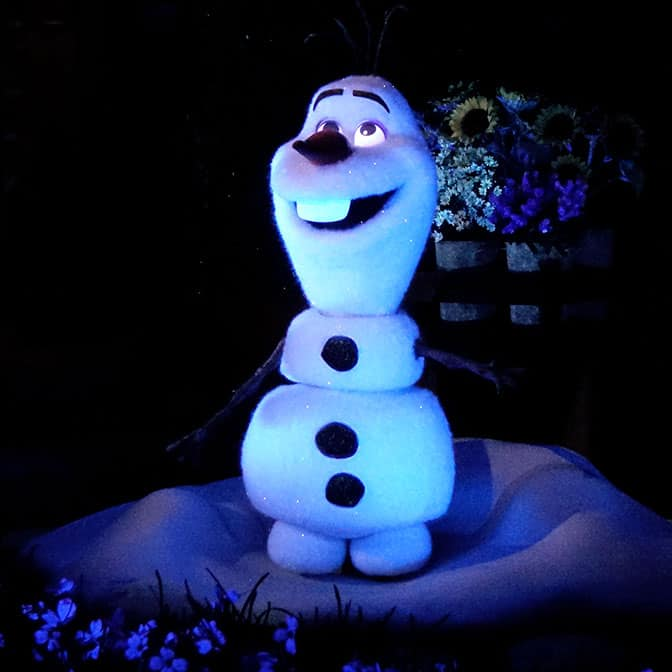 Frozen Ever After at Norway in Epcot Walt Disney World (24)