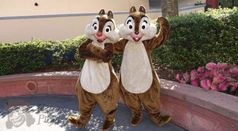 Hollywood Studios Chip n Dale character meet and greet (1)