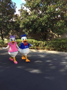 Daisy and Donald at Hollywood Studios Alanaexplains (3)