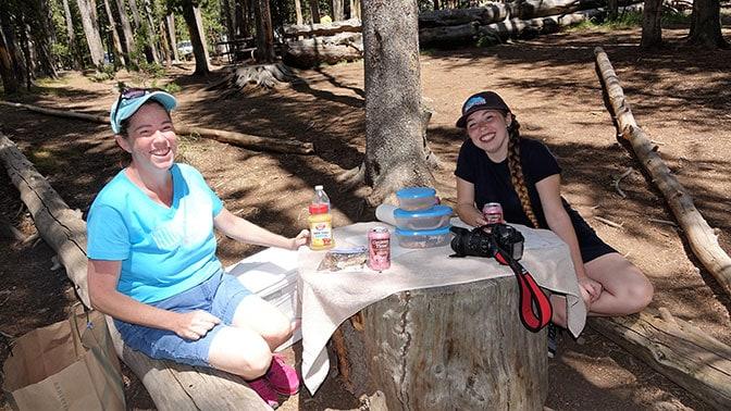 Yellowstone Day 5 the stump picnic