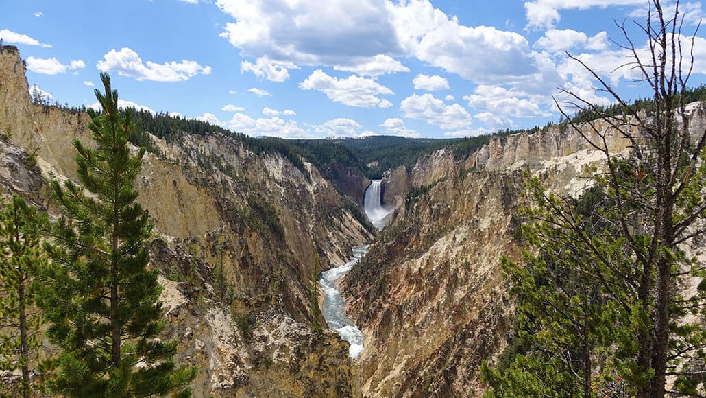 Yellowstone Day 5 Grand Canyon of the Yellowstone Artist Point