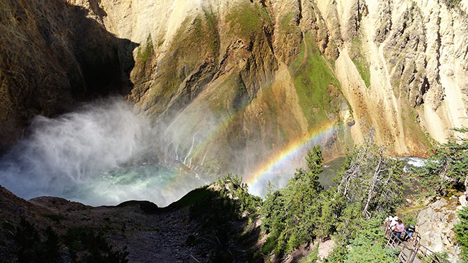 Yellowstone Day 5 Lower Falls from Uncle Tom's Trail