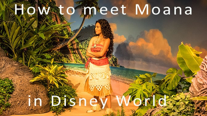 How to meet Moana in Walt Disney World Hollywood Studios
